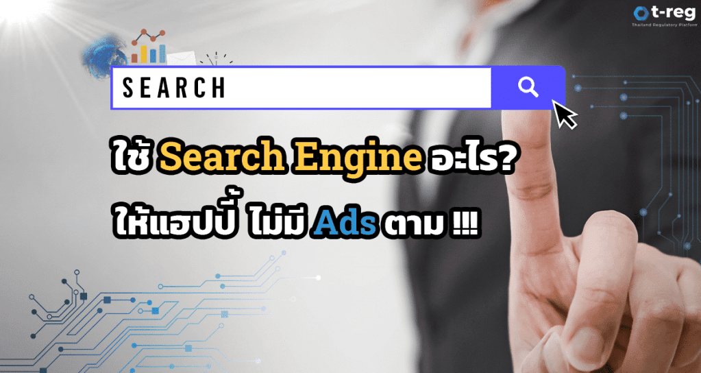 Privacy Search Engine